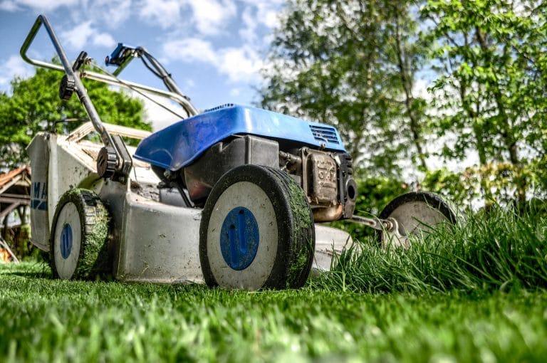 Approfondissons le métier de paysagiste – témoignage
